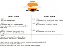 schema-gradering-h16